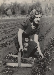Women Farming (5)